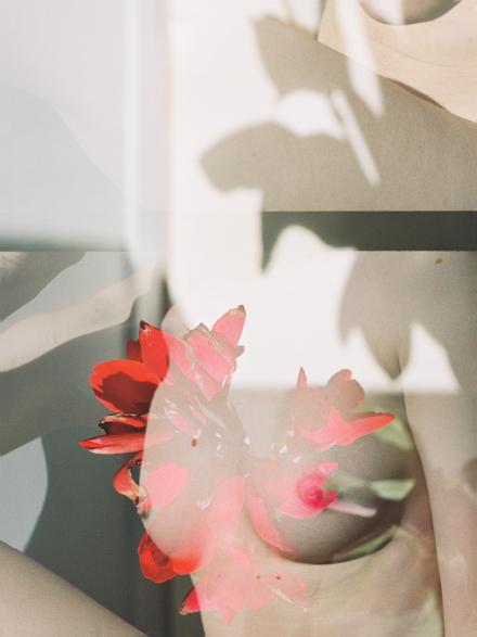 Annelie Bruijn | ElliottHalls Gallery | Exploring | 000024 1